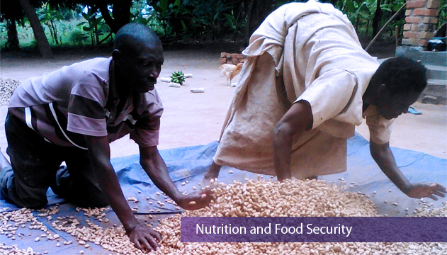 Food Security & Nutrition